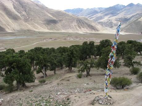 Klasztor wReting, Tybet 1