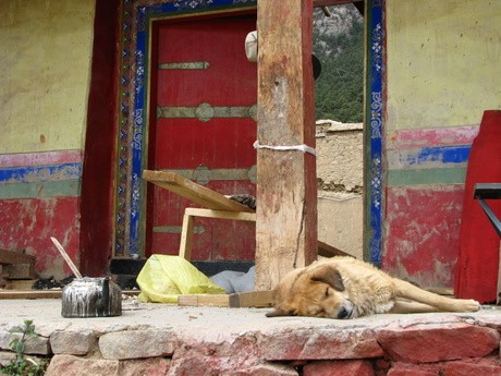 Klasztor wReting, Tybet 3