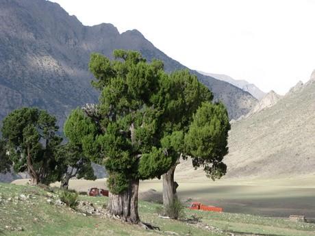 Klasztor wReting, Tybet 6