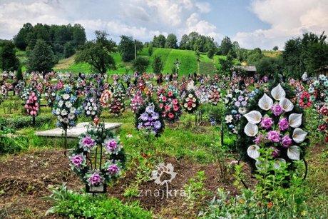 kolorowy-cmentarz-w-nowym-soloncu-rumunia-2014-szymon-nitka-1332