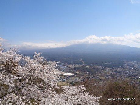 Fudżi - Kawaguchiko