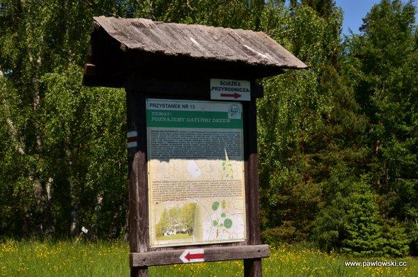 Główny Szlak Beskidzki; Schronisko Cyrla - Mochnaczka Niżna 7