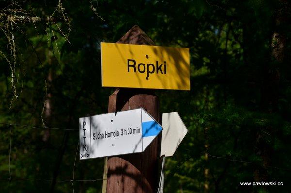 Główny Szlak Beskidzki; Mochnaczka Niżna - Bacówka PTTK wBartnem 13