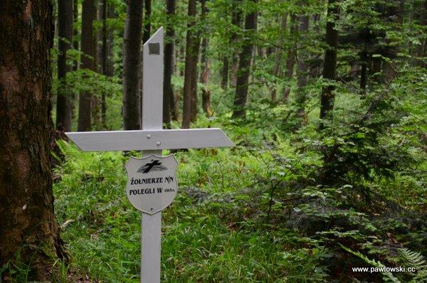 Główny Szlak Beskidzki; Prełuki - Cisna (Bacówka PTTK podHonem) 19