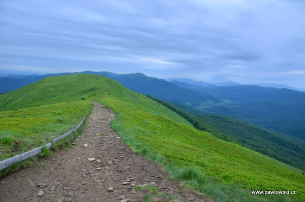 Główny Szlak Beskidzki; Połonina Wetlińska - Wołosate 9