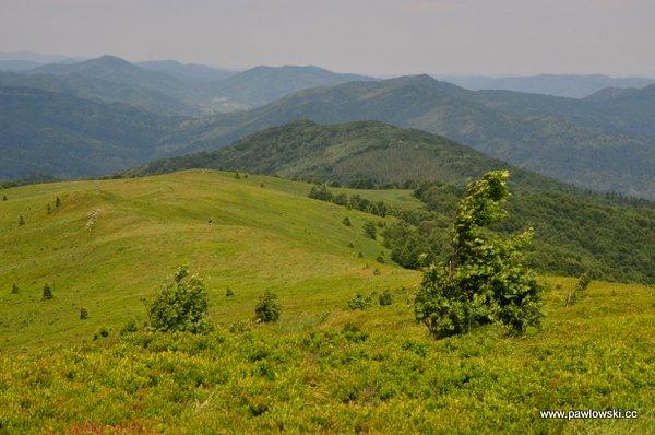 Ustrzyki Górne - Tarnica - Wołosate 2