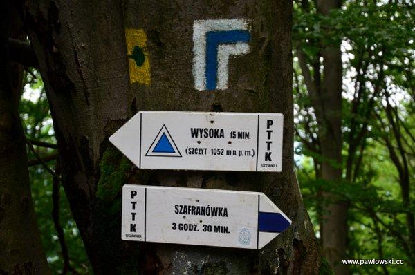 Korona Gór Polski; Pieniny - Wysoka 1050 m. n.p.m. 2