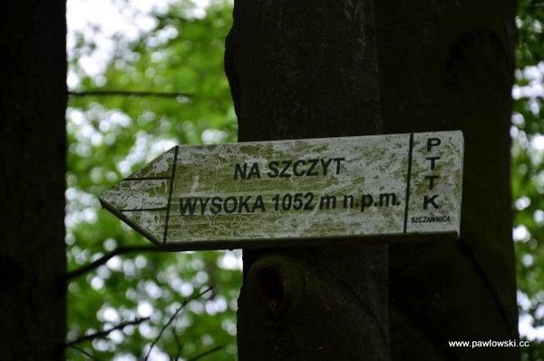 Korona Gór Polski; Pieniny - Wysoka 1050 m. n.p.m. 3
