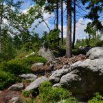 Główny Szlak Sudecki; Wambierzyce - Dańczów 1