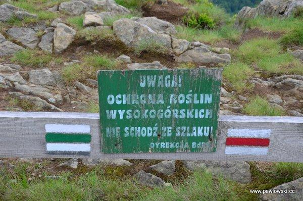Ustrzyki Górne - Tarnica - Wołosate 11