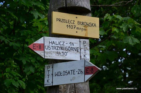 Ustrzyki Górne - Tarnica - Wołosate 20