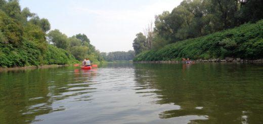 Spływ kajakowy Odrą
