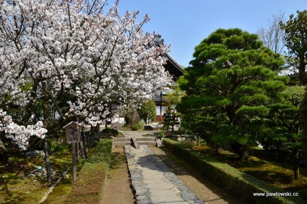 Tenryu-ji